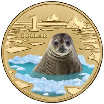 2013 Australian $1 Coin Polar Animals - Weddell Seal
