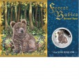 2013 FOREST BABIES 1/2OZ SILVER PROOF COIN - BROWN BEAR